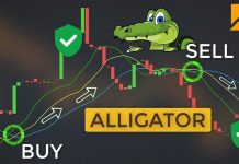 What Is The Alligator Indicator? How To Trade Forex Safely With It